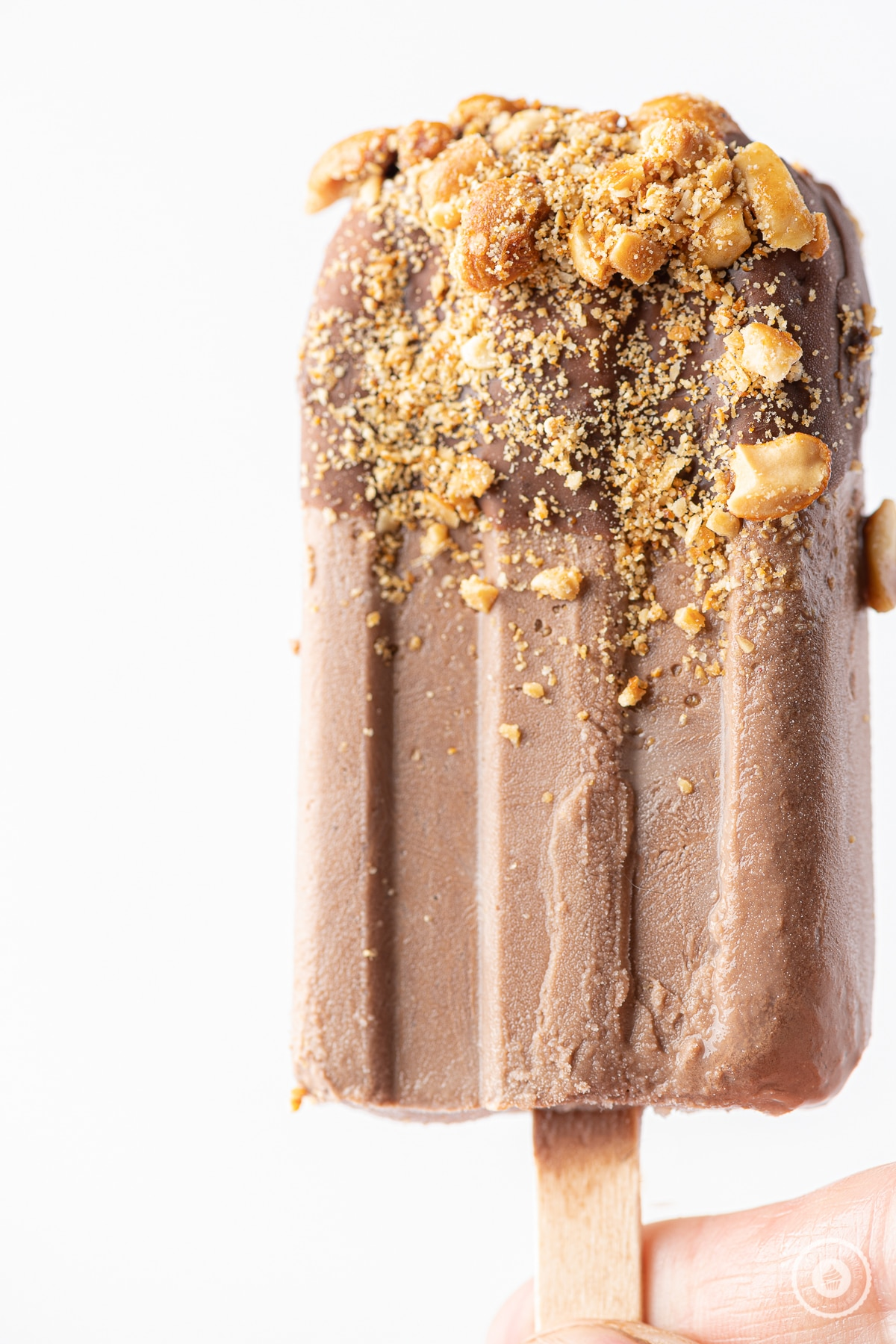 A single frozen chocolate popsicle with chocolate coating and crushed peanuts against a bright white background