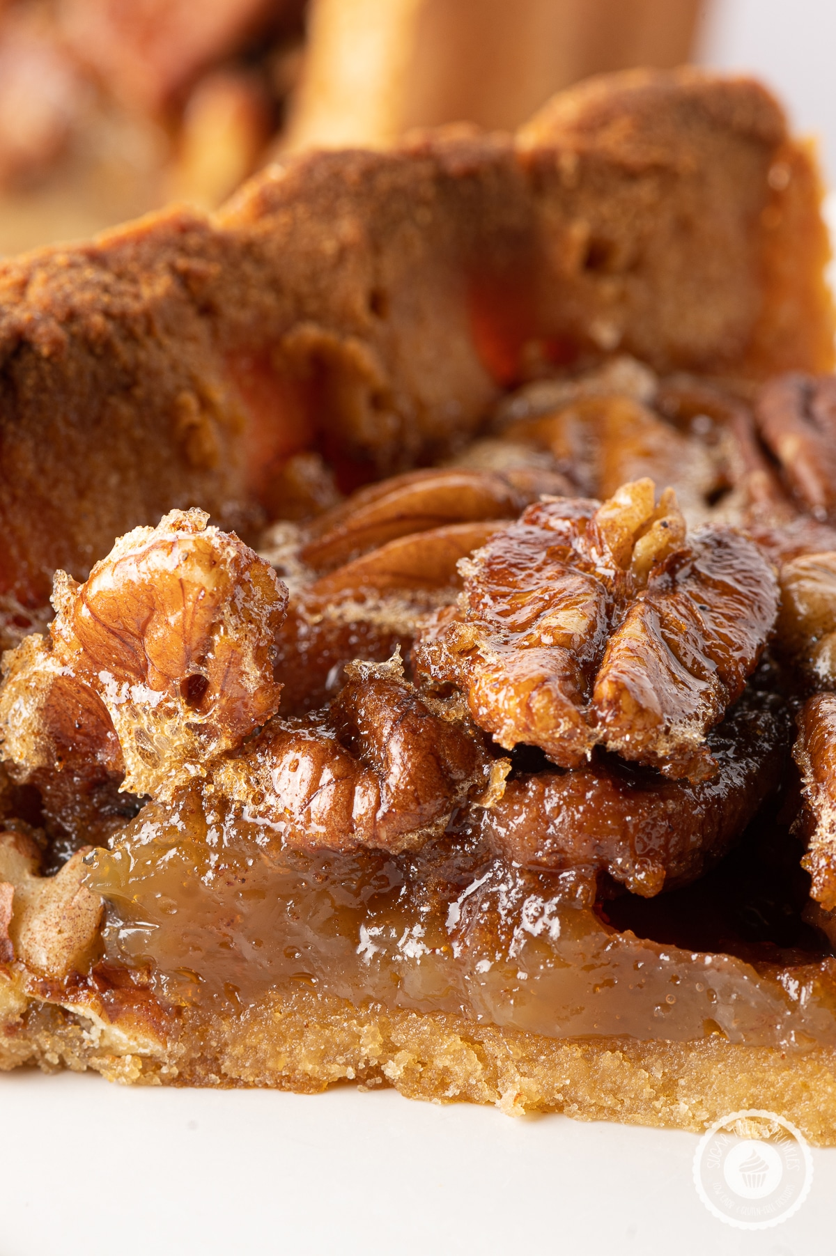 Close up image of a slice of pecan pie with sticky glazed pecans and gooey caramel like filling