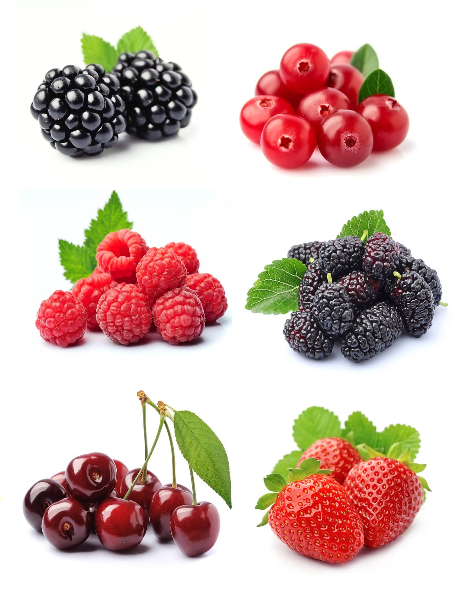 Low carb pantry essential berries & fruit isolated on a bright white background (cherries, blackberries, currents, raspberries, and strawberries)