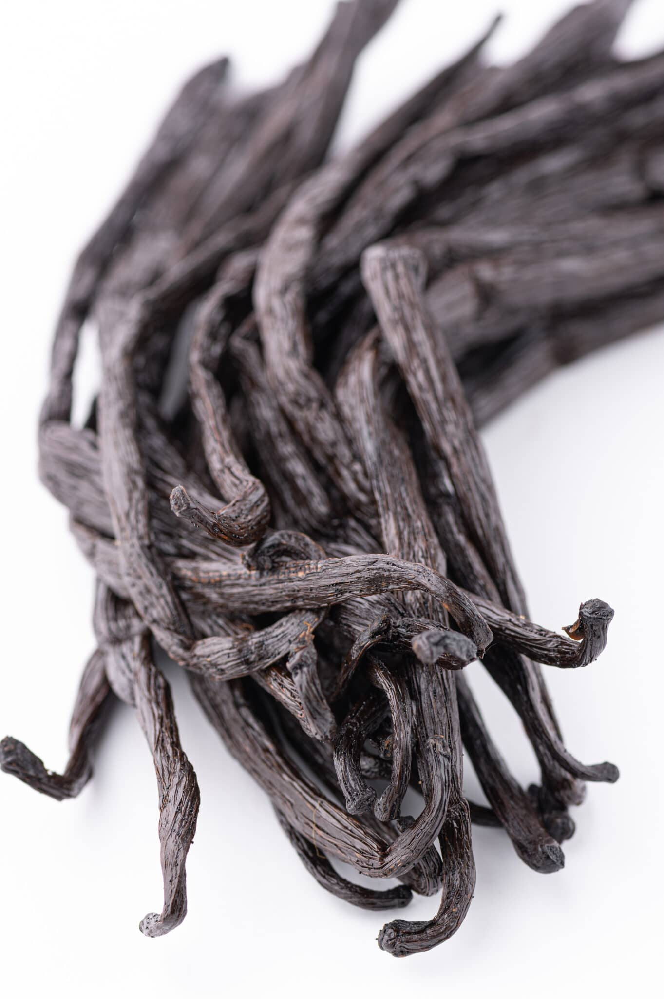 A bundle of fresh plump vanilla beans on a bright white table top.